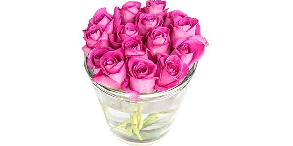 Flowers Roses in Tub
