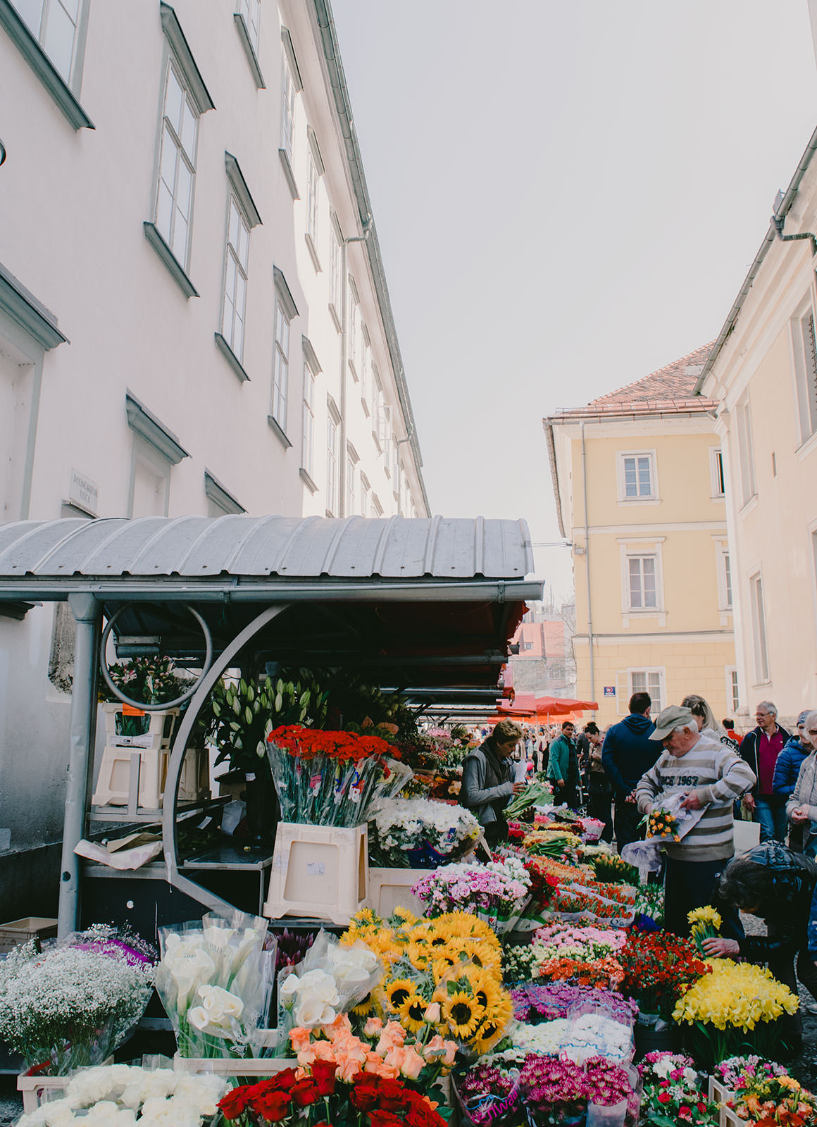 9 Reasons Locals call Ljubljana their \'little Paris\' | Jayde Archives