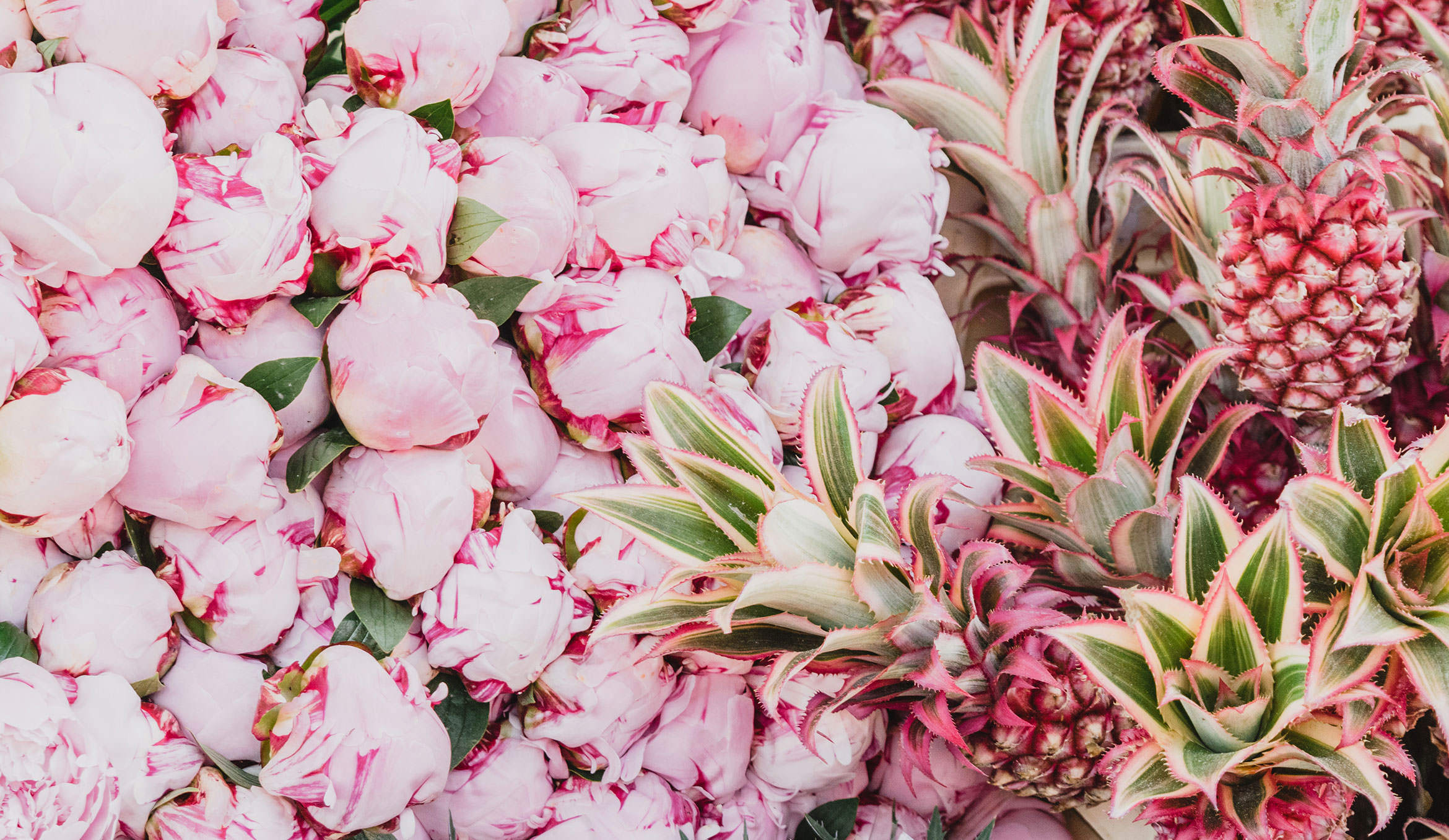 Prettiest Places to visit in London - Columbia Road Flower Market
