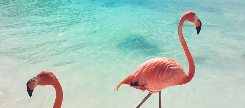 7 Wanderlust Worthy Destinations to put on your Bucket List