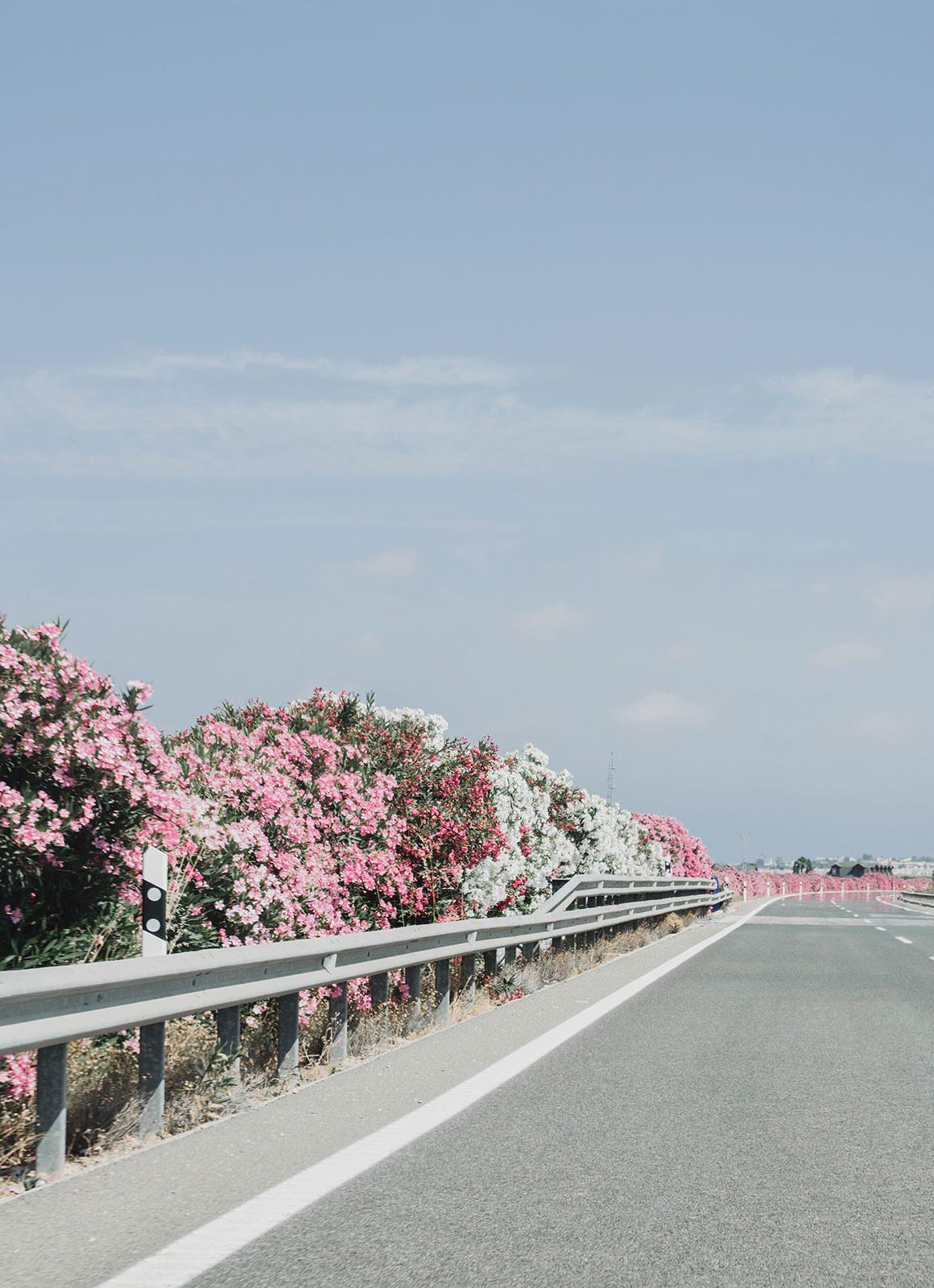 Barcelona to Madrid Road Trip