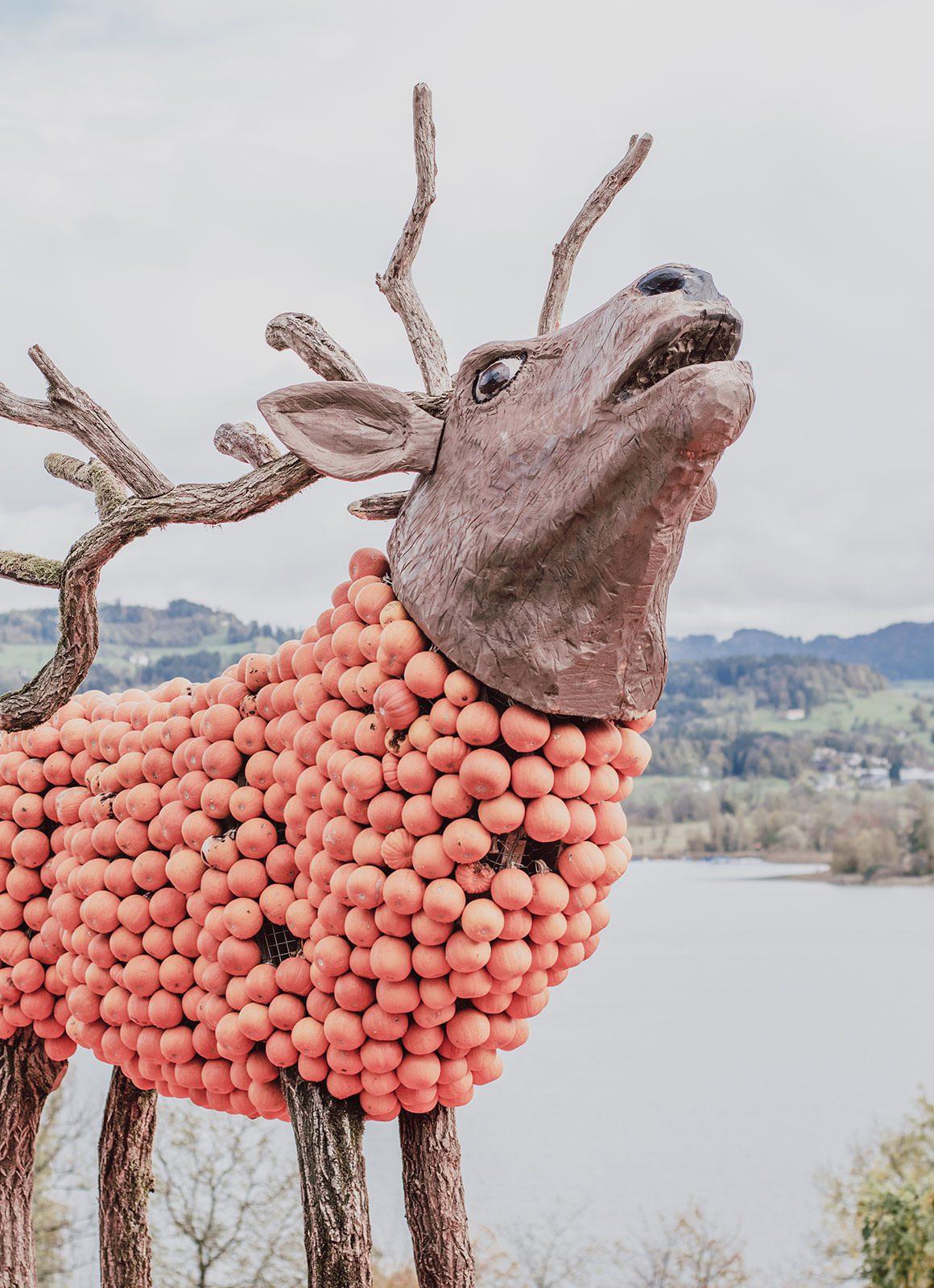 A day at Jucker Farm Pumpkin Festival in Switzerland