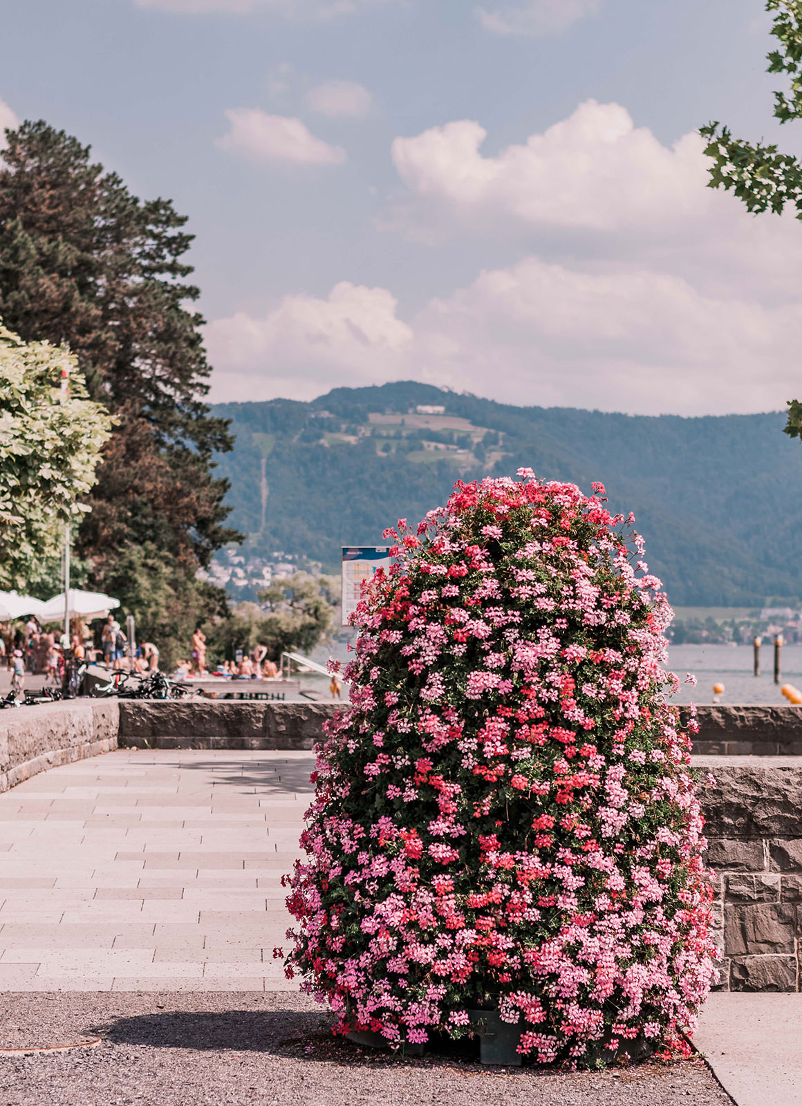 Things to do in Zug, Switzerland by a Zug Expat
