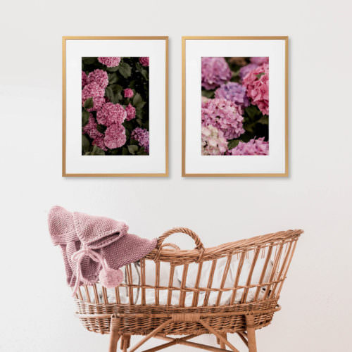 Eco Friendly Boho Floral Hydrangea Photography Print
