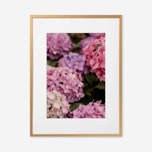 Eco Friendly Boho Floral Hydrangea Photography Print