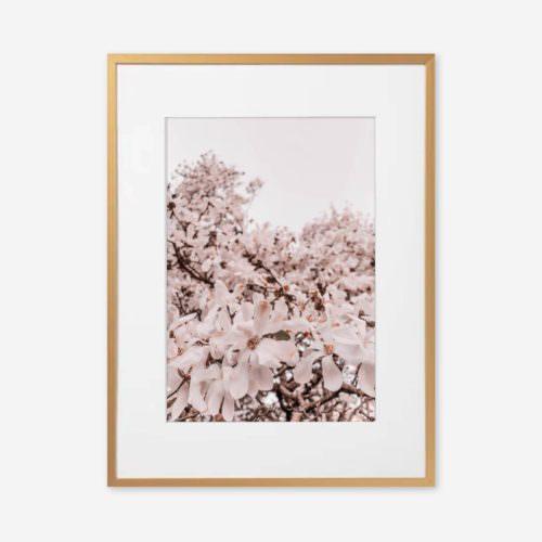 Eco Friendly Boho Floral Magnolia Photography Print