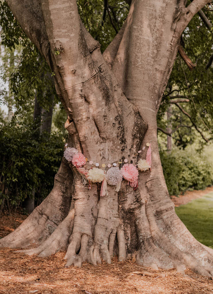 Outdoor Picnic Baby Shower Tree Decoration